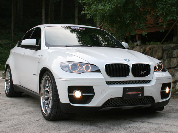 BMW X6 2008+